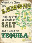 When Life Gives You Lemons Tequila Metal Sign Wall Plaque 15X20cm